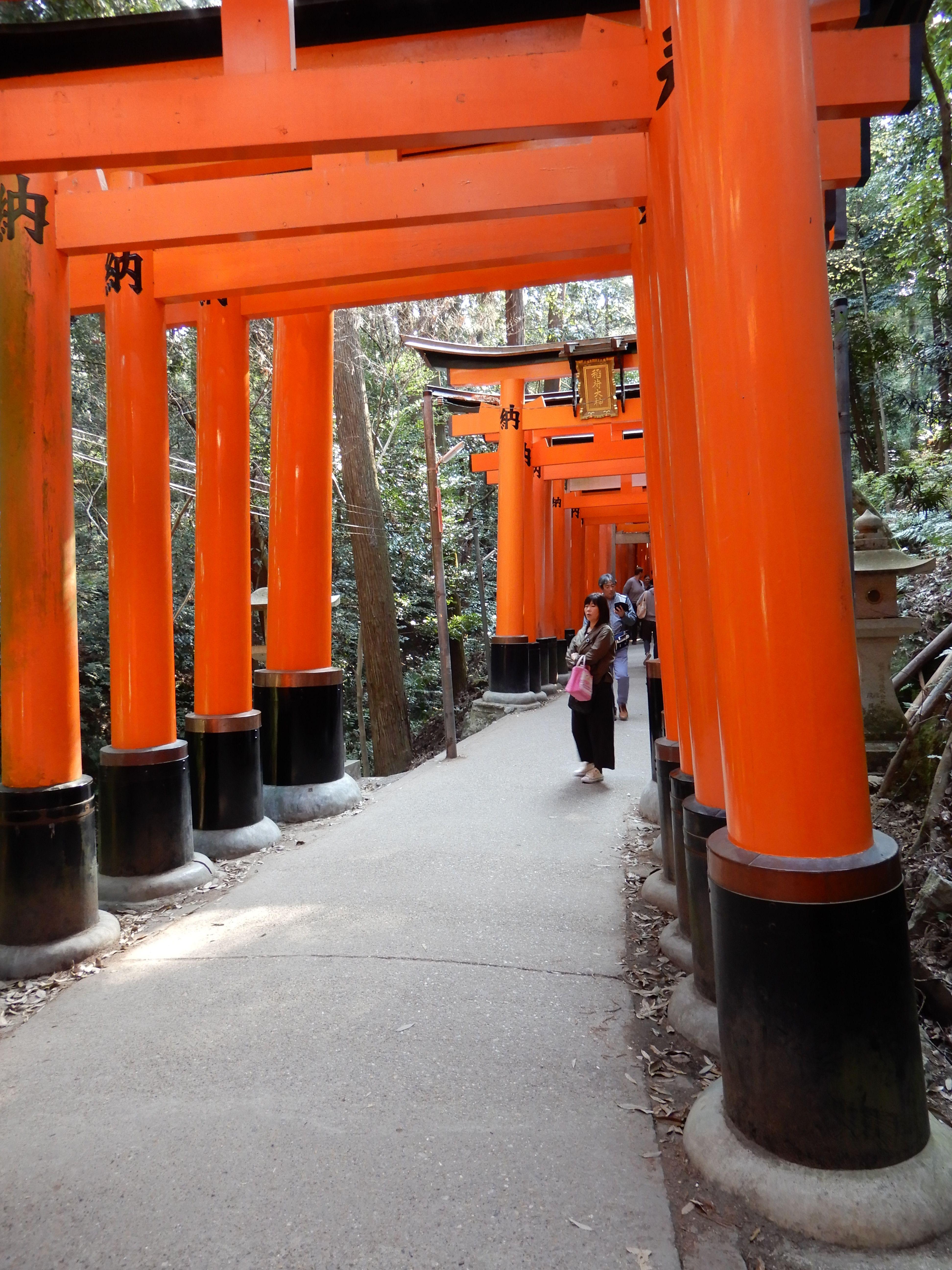 Fushimi Inari-taisha 11