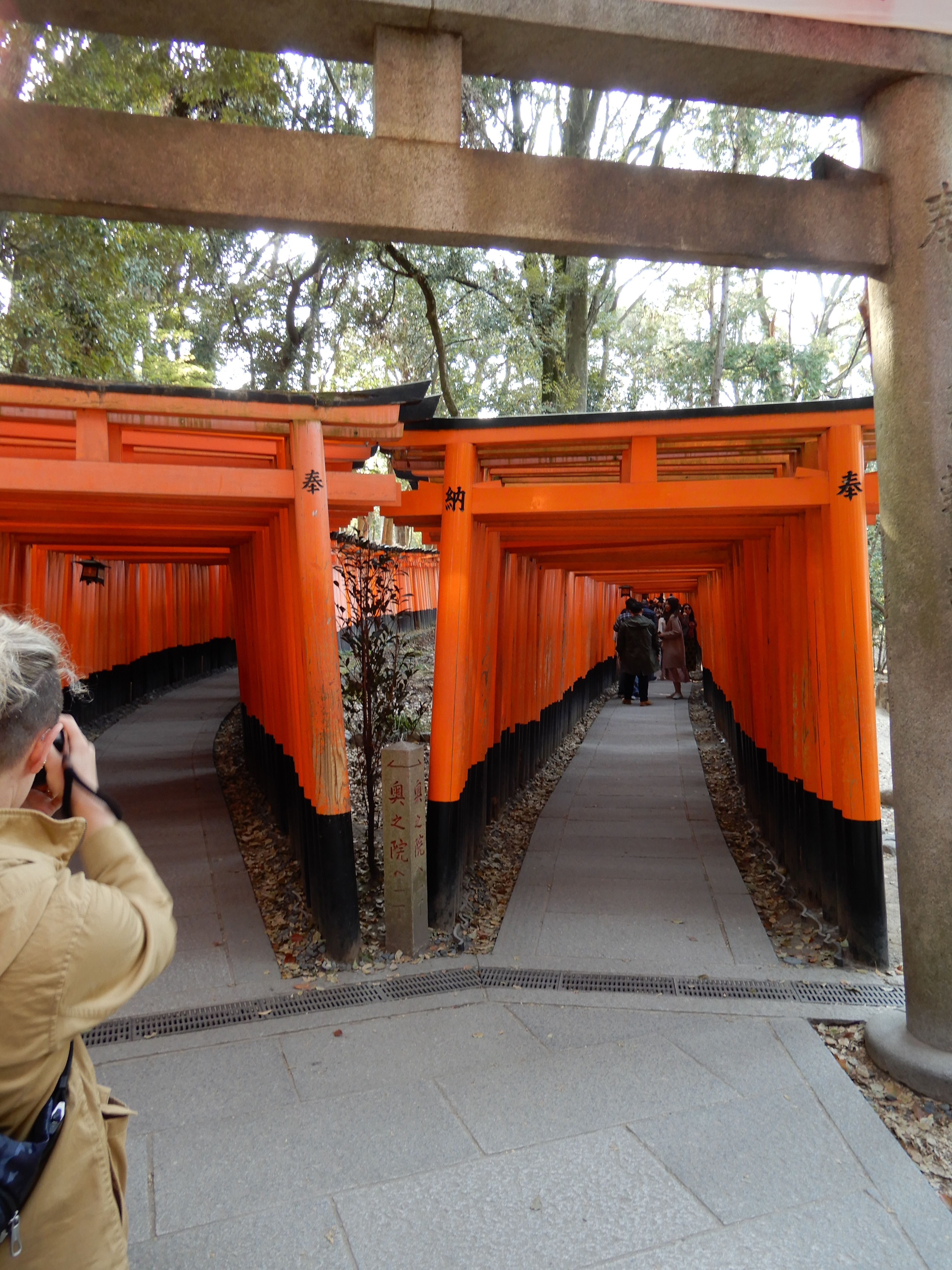Fushimi Inari-taisha 8